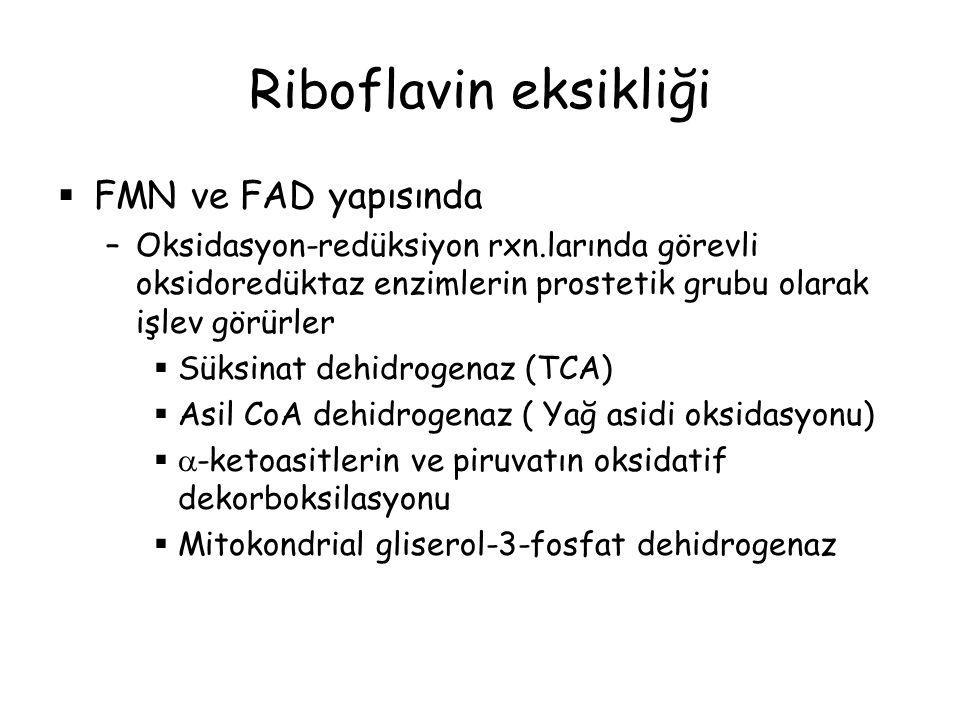 Riboflavin eksikliği FMN ve FAD yapısında