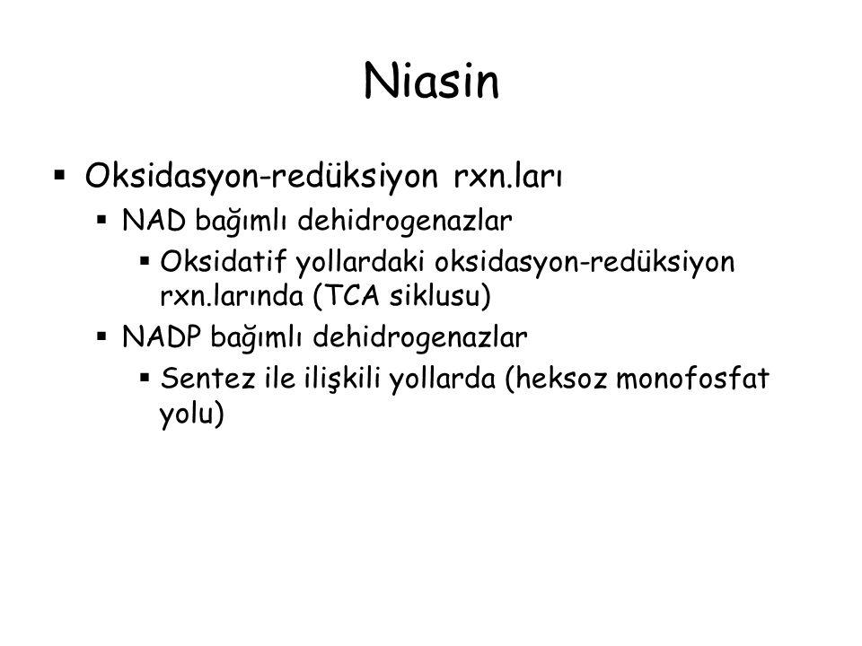 Niasin Oksidasyon-redüksiyon rxn.ları NAD bağımlı dehidrogenazlar