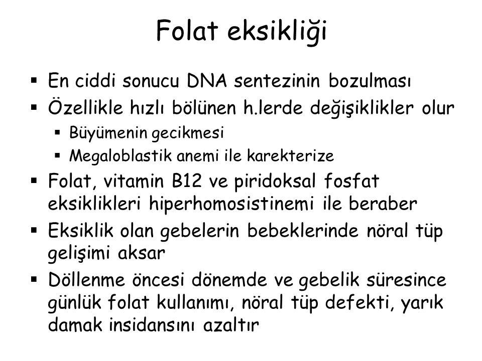 Folat eksikliği En ciddi sonucu DNA sentezinin bozulması