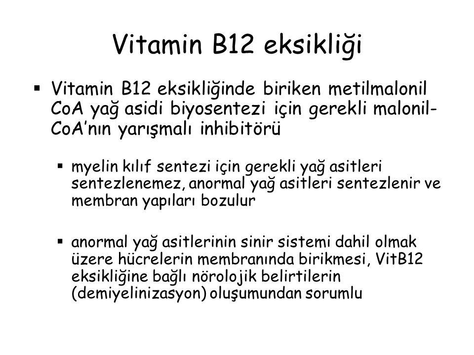 Vitamin B12 eksikliği Vitamin B12 eksikliğinde biriken metilmalonil CoA yağ asidi biyosentezi için gerekli malonil-CoA'nın yarışmalı inhibitörü.