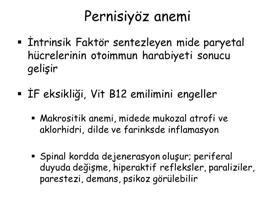 Pernisiyöz anemi İntrinsik Faktör sentezleyen mide paryetal hücrelerinin otoimmun harabiyeti sonucu gelişir.