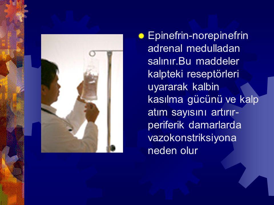 Epinefrin-norepinefrin adrenal medulladan salınır