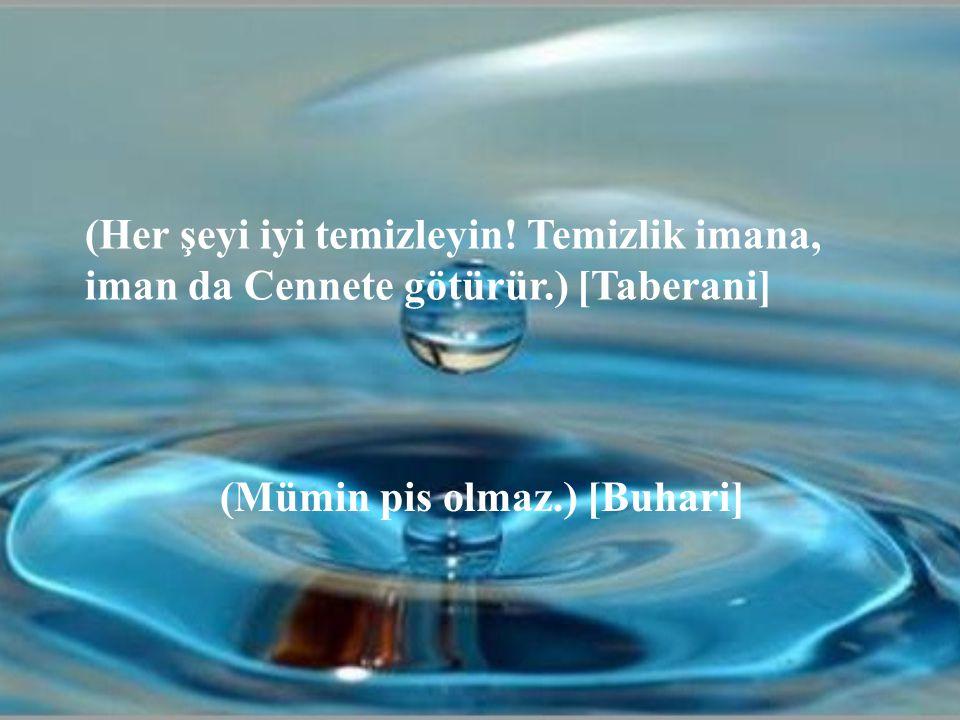 (Her şeyi iyi temizleyin. Temizlik imana, iman da Cennete götürür