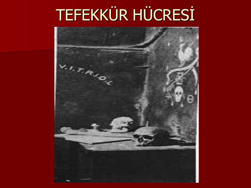 TEFEKKÜR HÜCRESİ