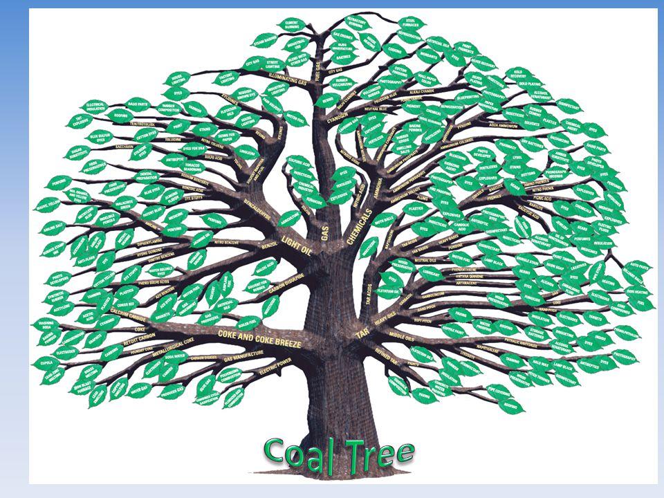 Coal Tree