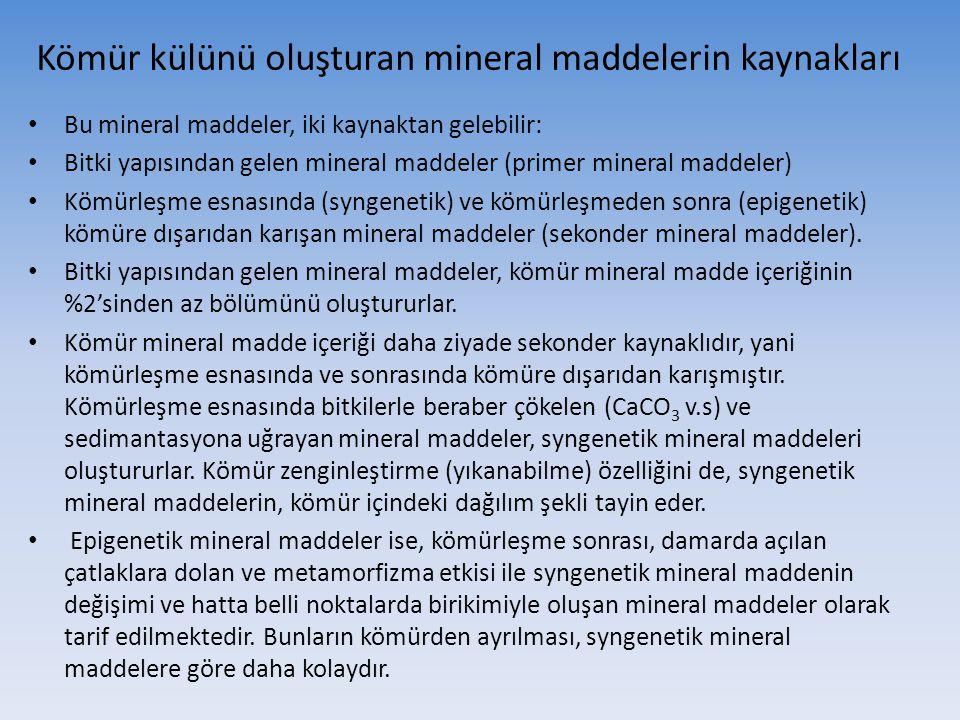 Kömür külünü oluşturan mineral maddelerin kaynakları