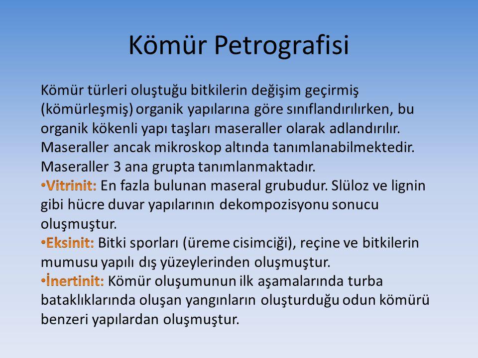 Kömür Petrografisi