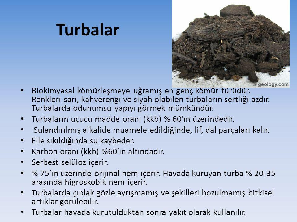 Turbalar
