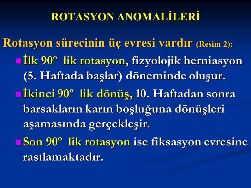 Rotasyon sürecinin üç evresi vardır (Resim 2):