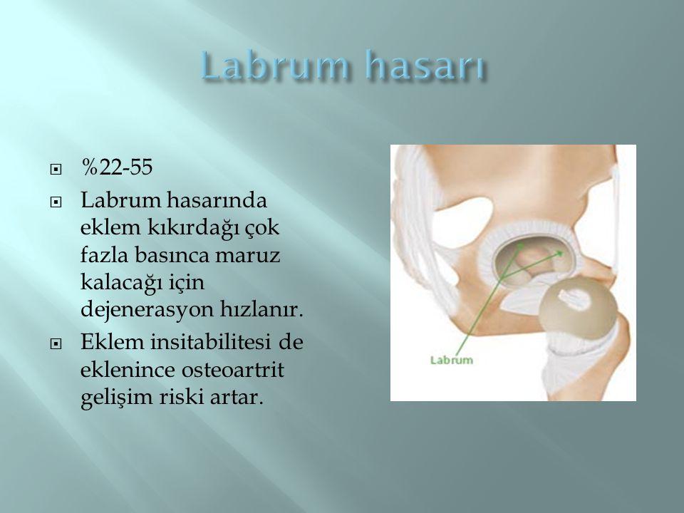 Labrum hasarı %22-55. Labrum hasarında eklem kıkırdağı çok fazla basınca maruz kalacağı için dejenerasyon hızlanır.