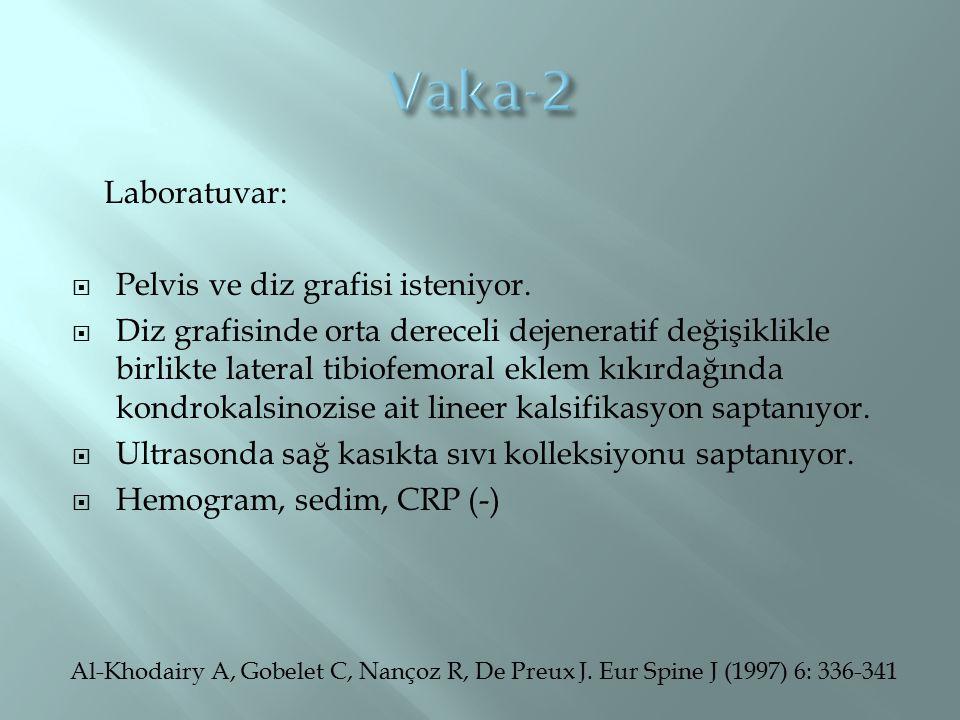 Vaka-2 Laboratuvar: Pelvis ve diz grafisi isteniyor.