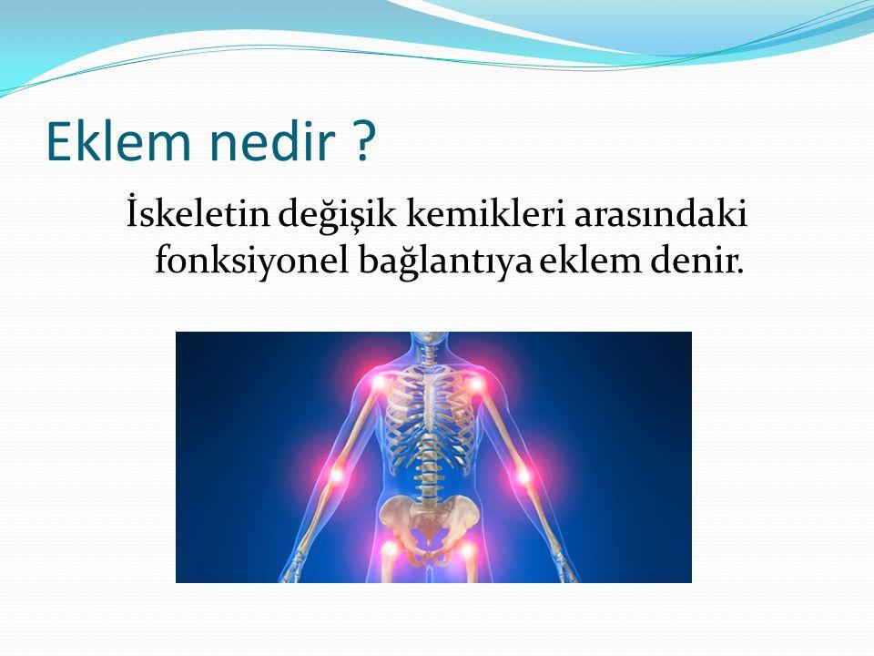 Eklem nedir İskeletin değişik kemikleri arasındaki fonksiyonel bağlantıya eklem denir.