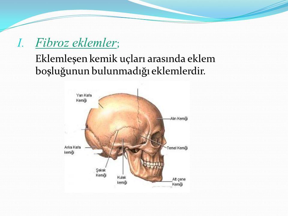 Fibroz eklemler; Eklemleşen kemik uçları arasında eklem boşluğunun bulunmadığı eklemlerdir.