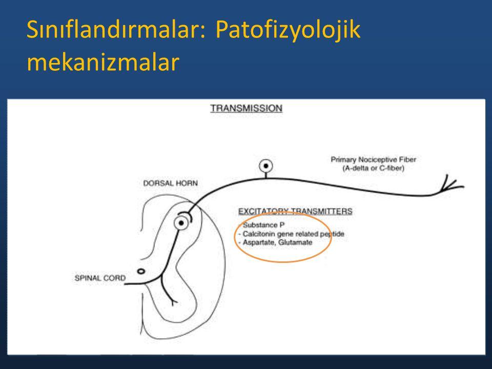 Sınıflandırmalar: Patofizyolojik mekanizmalar