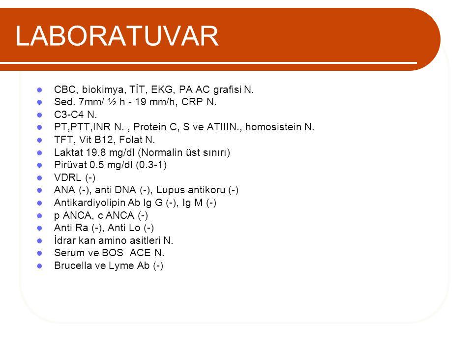 LABORATUVAR CBC, biokimya, TİT, EKG, PA AC grafisi N.