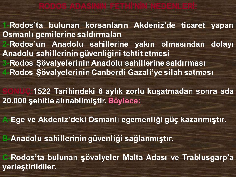 RODOS ADASININ FETHİ'NİN NEDENLERİ: