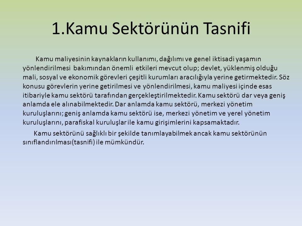 1.Kamu Sektörünün Tasnifi