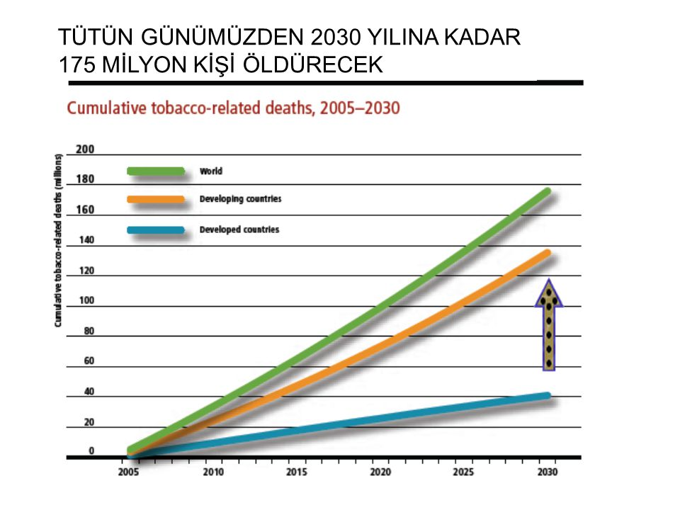TÜTÜN GÜNÜMÜZDEN 2030 YILINA KADAR
