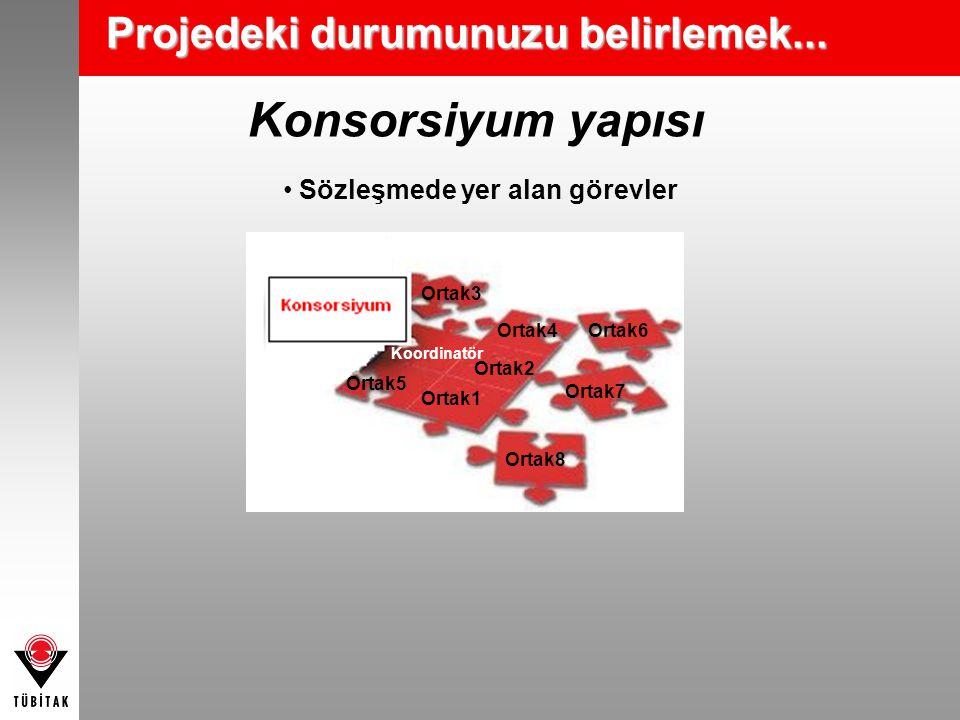 Konsorsiyum yapısı Projedeki durumunuzu belirlemek...