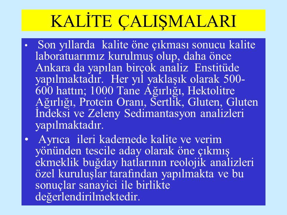 KALİTE ÇALIŞMALARI