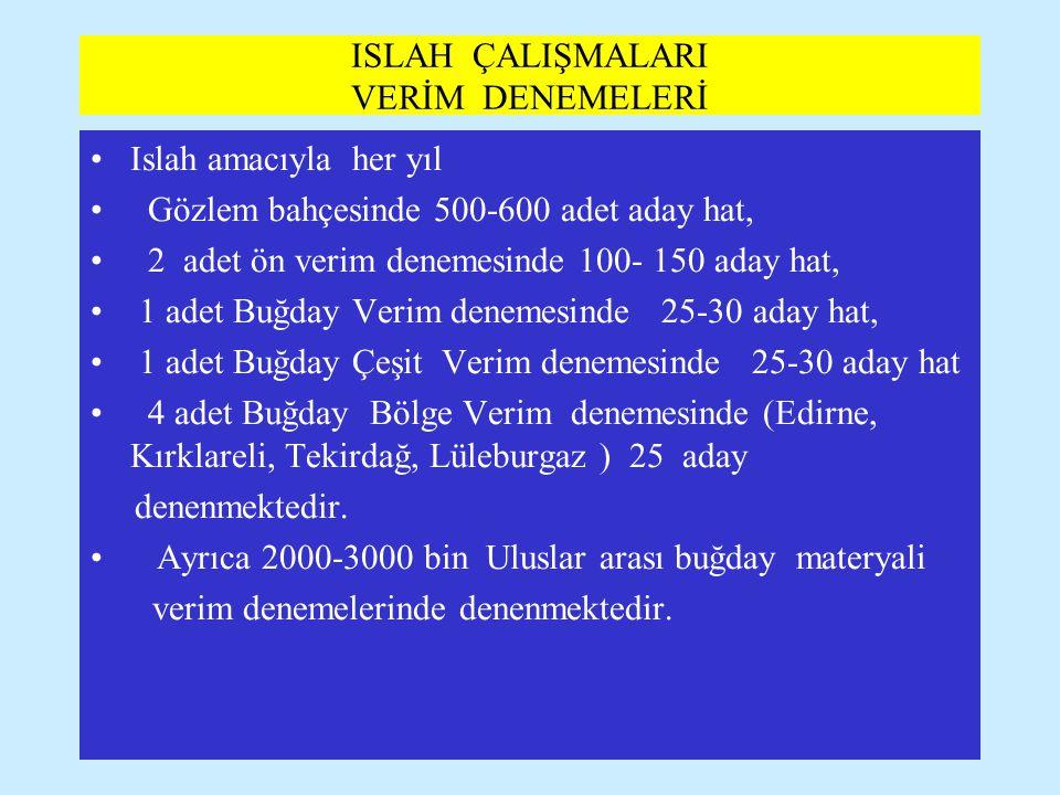 ISLAH ÇALIŞMALARI VERİM DENEMELERİ
