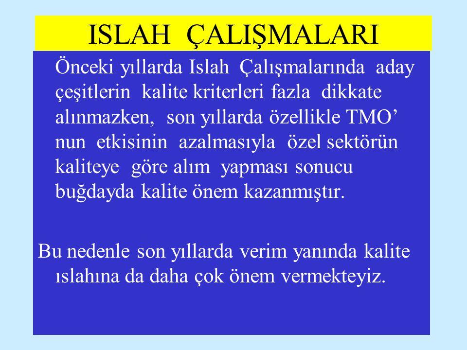 ISLAH ÇALIŞMALARI
