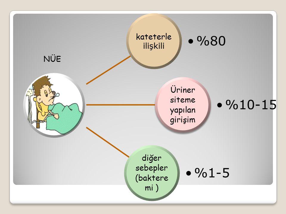 %10-15 %1-5 %80 diğer sebepler (bakteremi )