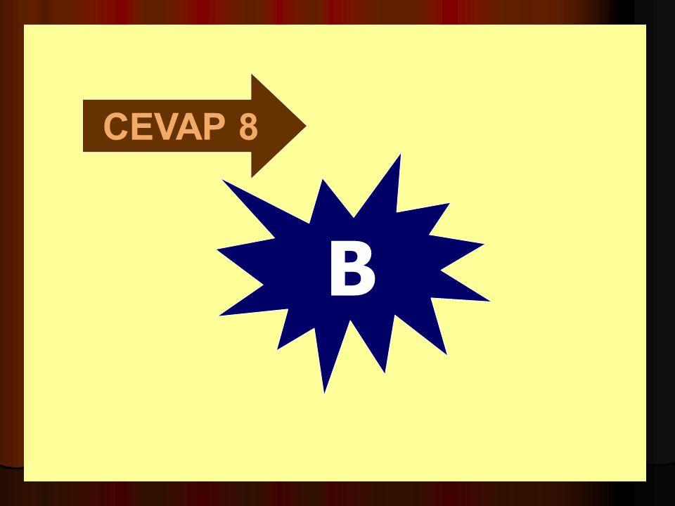CEVAP 8 B