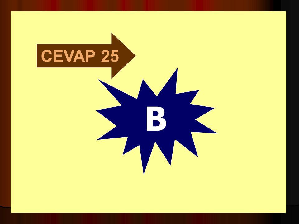 CEVAP 25 B