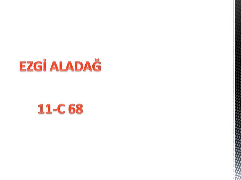 EZGİ ALADAĞ 11-C 68