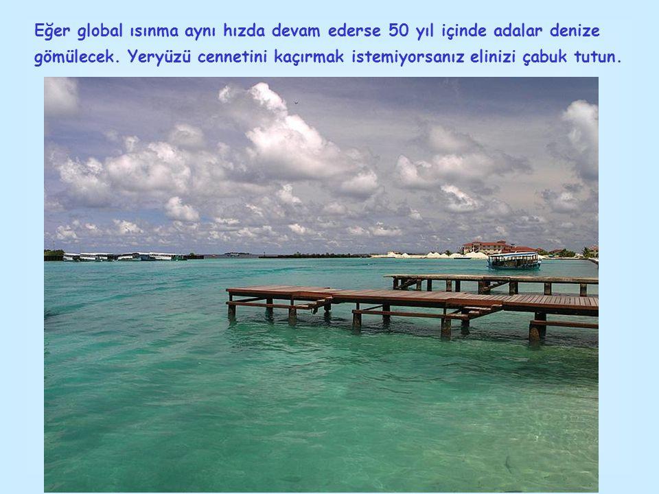Eğer global ısınma aynı hızda devam ederse 50 yıl içinde adalar denize gömülecek.