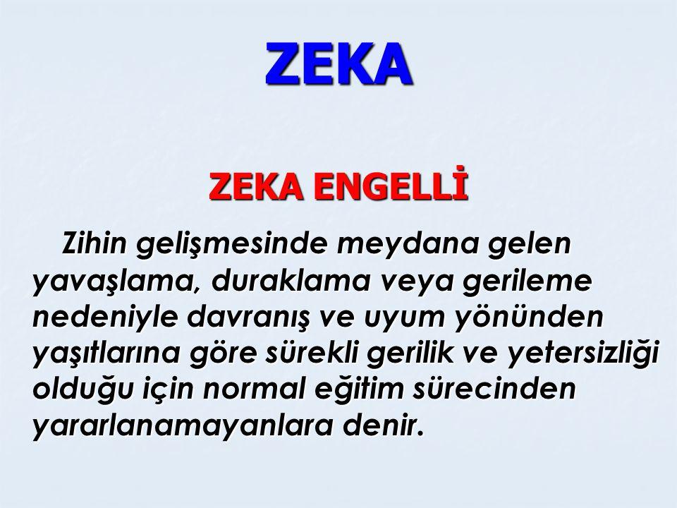 ZEKA ZEKA ENGELLİ.