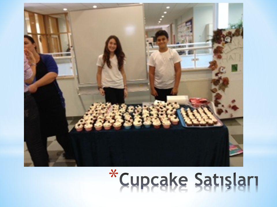 Cupcake Satışları