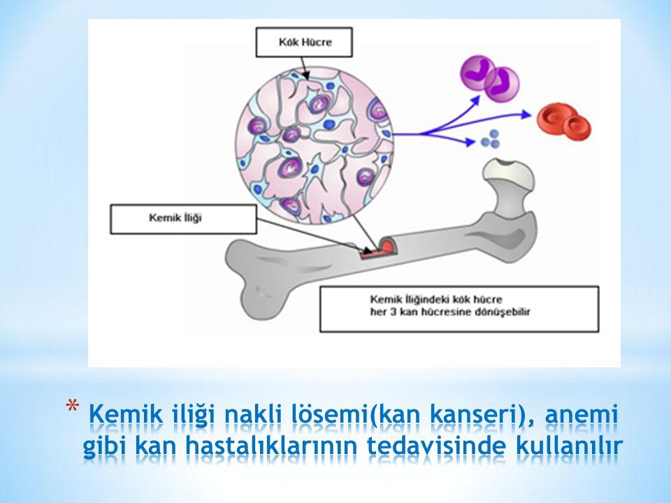 Kemik iliği nakli lösemi(kan kanseri), anemi gibi kan hastalıklarının tedavisinde kullanılır