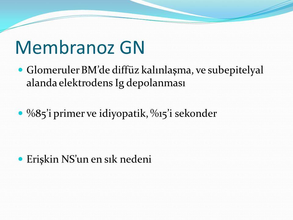 Membranoz GN Glomeruler BM'de diffüz kalınlaşma, ve subepitelyal alanda elektrodens Ig depolanması.