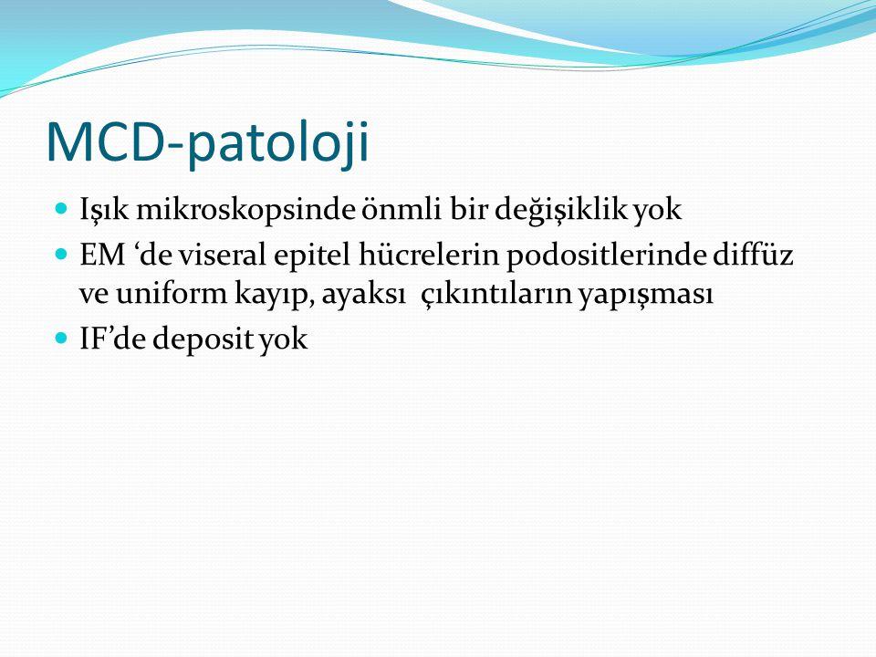 MCD-patoloji Işık mikroskopsinde önmli bir değişiklik yok