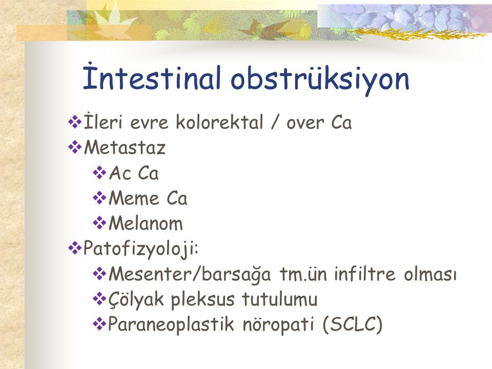 İntestinal obstrüksiyon