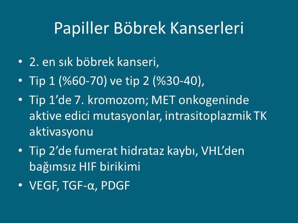 Papiller Böbrek Kanserleri