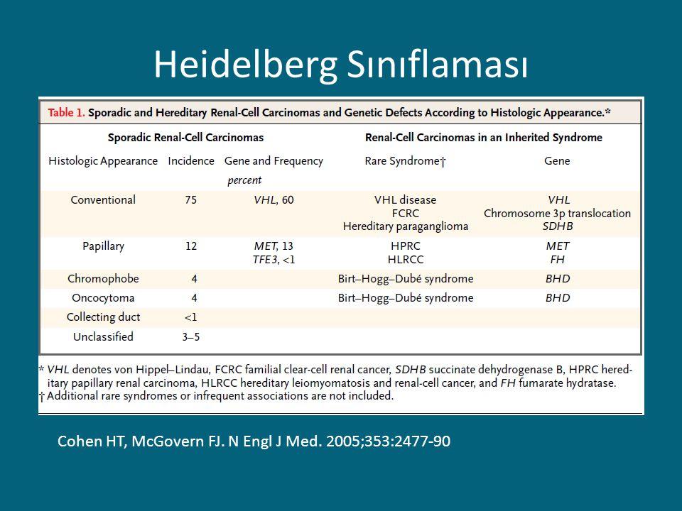 Heidelberg Sınıflaması