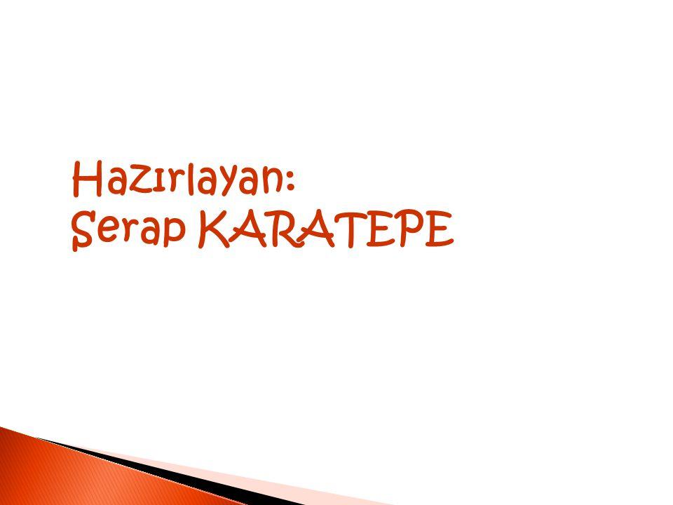 Hazırlayan: Serap KARATEPE