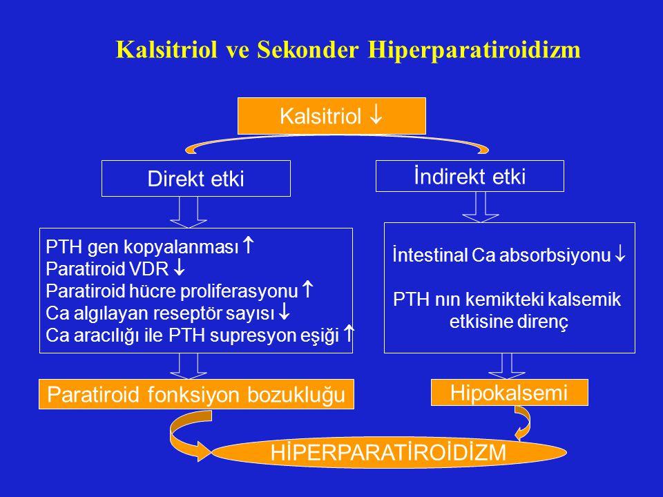 Kalsitriol ve Sekonder Hiperparatiroidizm