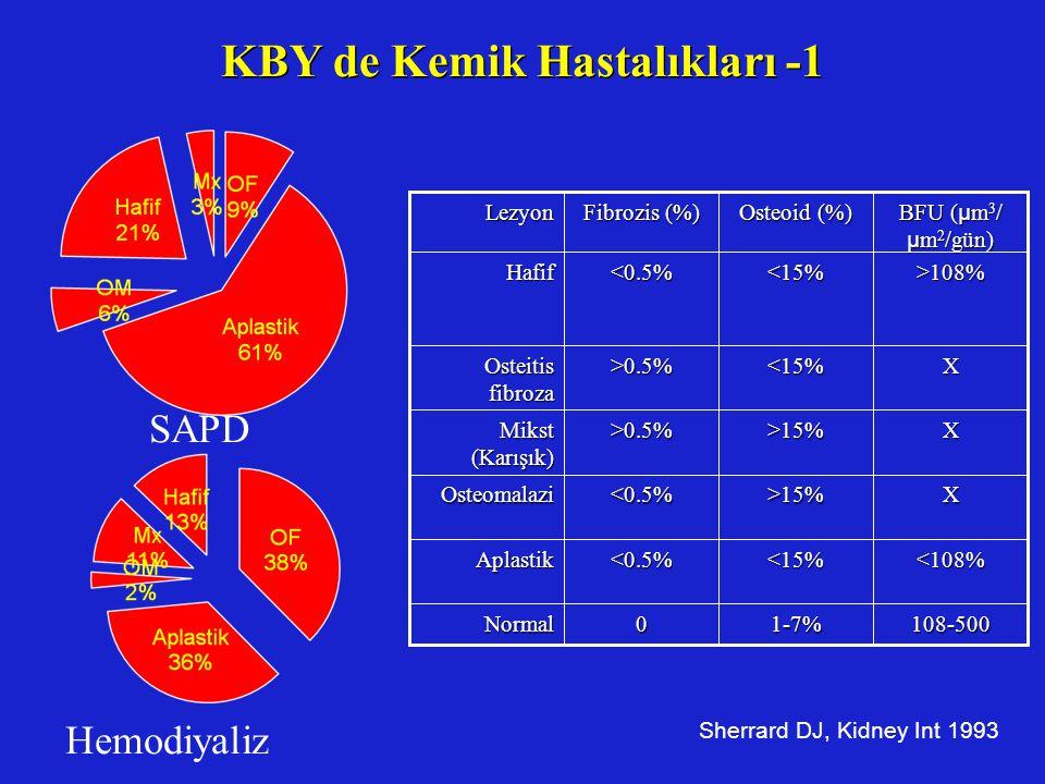 KBY de Kemik Hastalıkları -1
