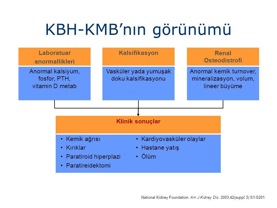 KBH-KMB'nın görünümü Calcification Laboratuar anormallikleri