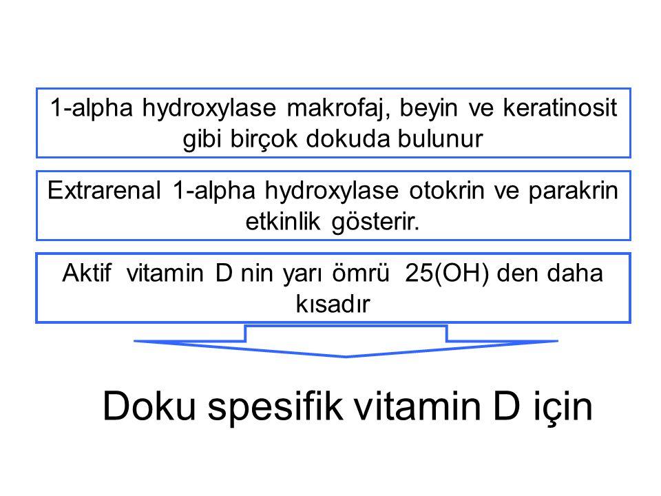 Doku spesifik vitamin D için