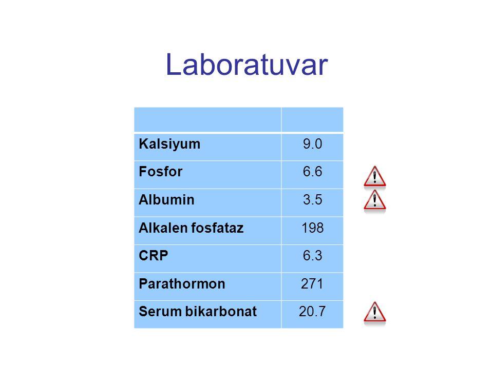 Laboratuvar Kalsiyum 9.0 Fosfor 6.6 Albumin 3.5 Alkalen fosfataz 198