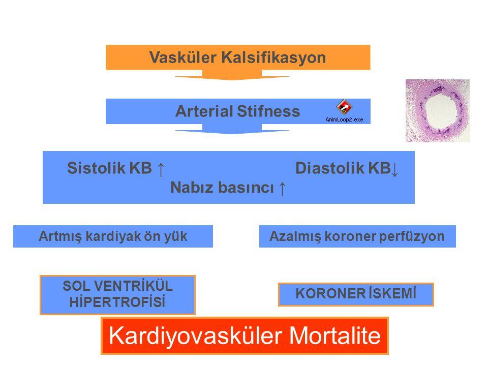 Kardiyovasküler Mortalite