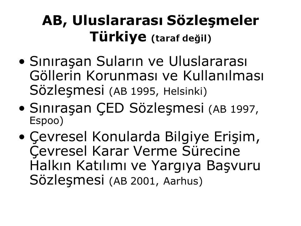 AB, Uluslararası Sözleşmeler Türkiye (taraf değil)