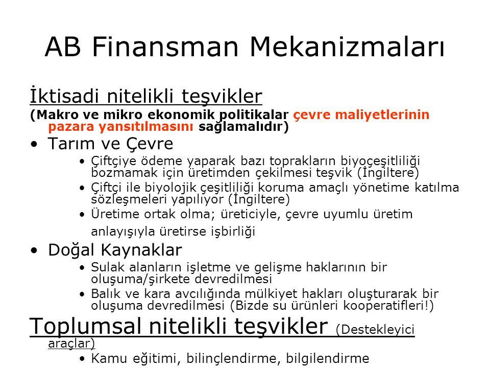 AB Finansman Mekanizmaları