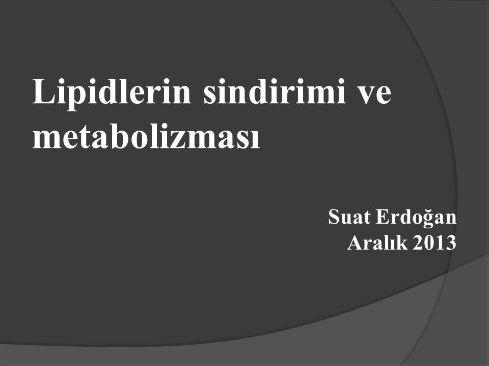 Lipidlerin sindirimi ve metabolizması