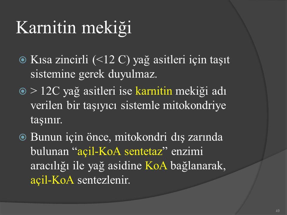 Karnitin mekiği Kısa zincirli (<12 C) yağ asitleri için taşıt sistemine gerek duyulmaz.